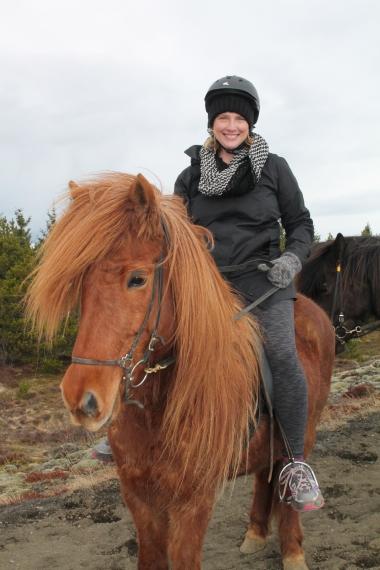 Iceland molly horse (2)