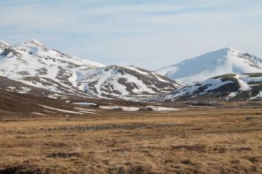 Iceland hillside